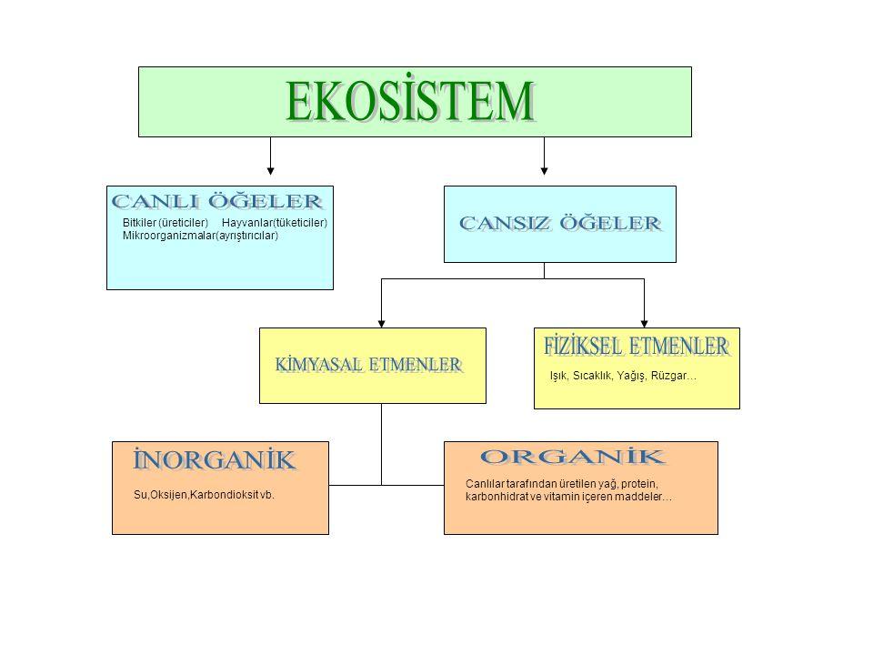 EKOSİSTEM CANLI ÖĞELER CANSIZ ÖĞELER ORGANİK İNORGANİK