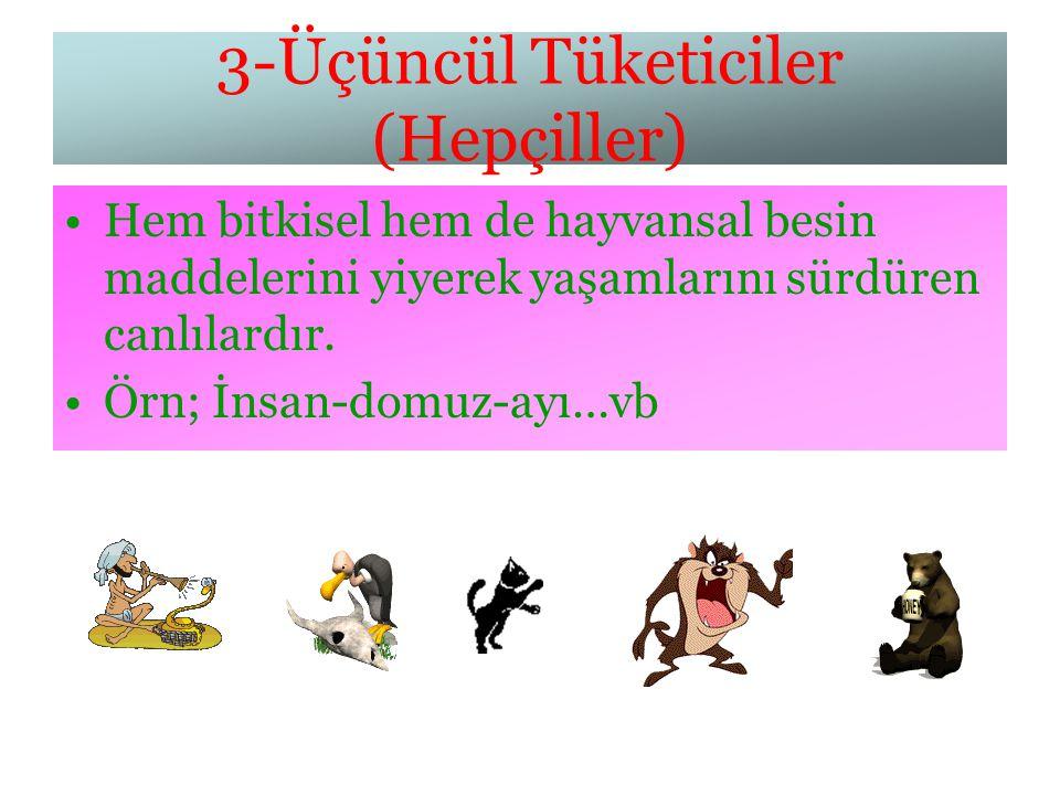 3-Üçüncül Tüketiciler (Hepçiller)