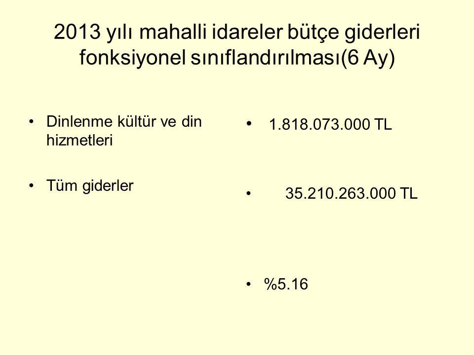 2013 yılı mahalli idareler bütçe giderleri fonksiyonel sınıflandırılması(6 Ay)