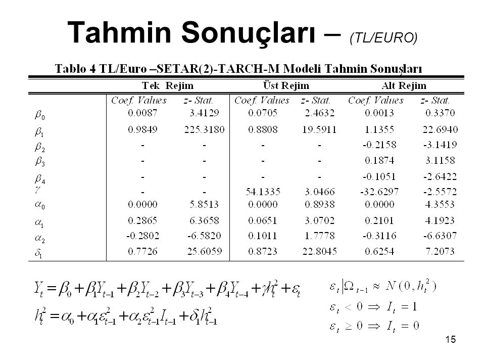Tahmin Sonuçları – (TL/EURO)