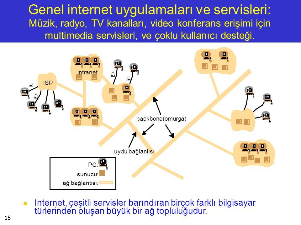 Genel internet uygulamaları ve servisleri: Müzik, radyo, TV kanalları, video konferans erişimi için multimedia servisleri, ve çoklu kullanıcı desteği.