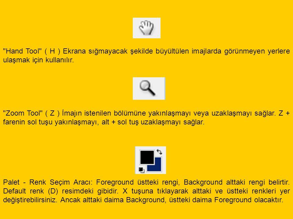 Hand Tool ( H ) Ekrana sığmayacak şekilde büyültülen imajlarda görünmeyen yerlere ulaşmak için kullanılır.