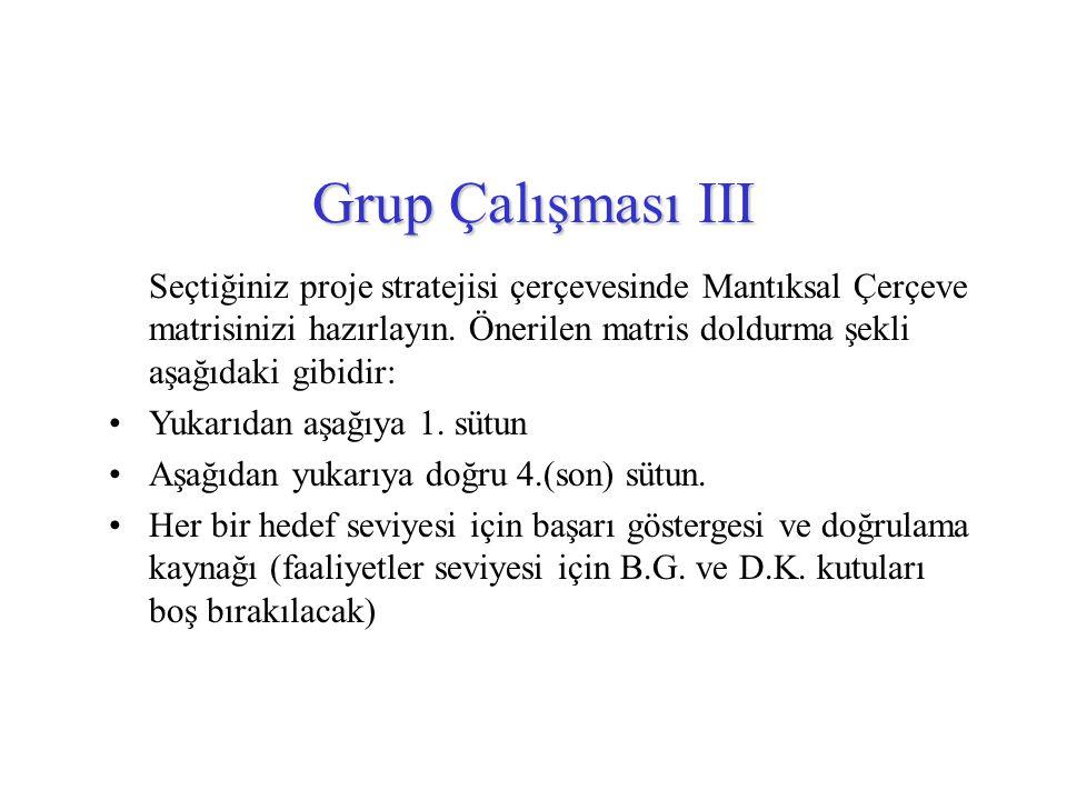 Grup Çalışması III