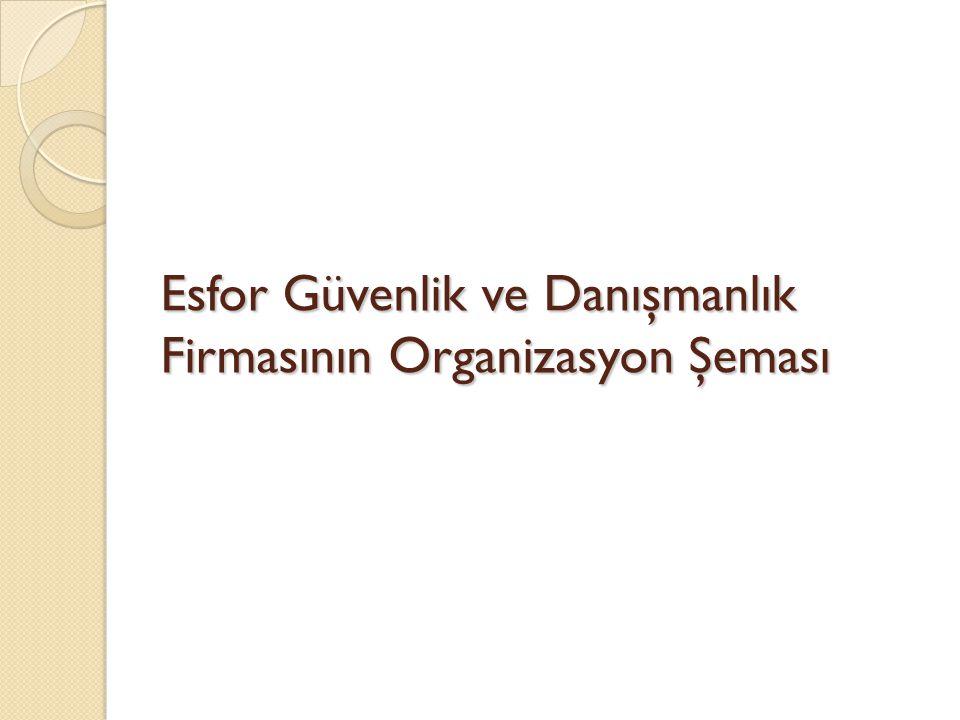Esfor Güvenlik ve Danışmanlık Firmasının Organizasyon Şeması
