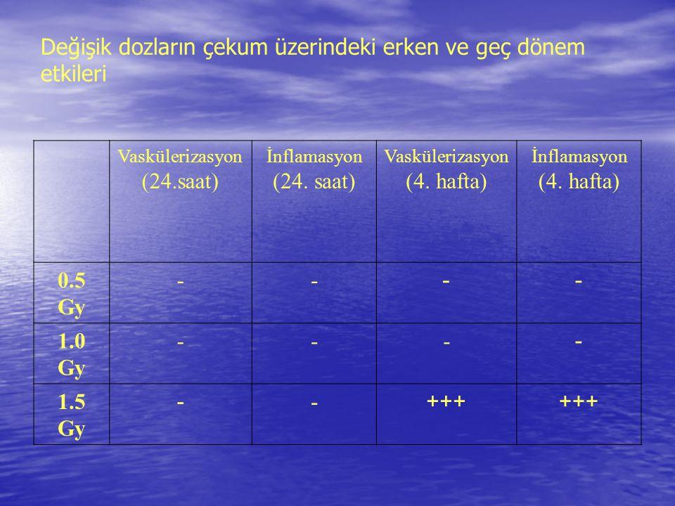 Değişik dozların çekum üzerindeki erken ve geç dönem etkileri