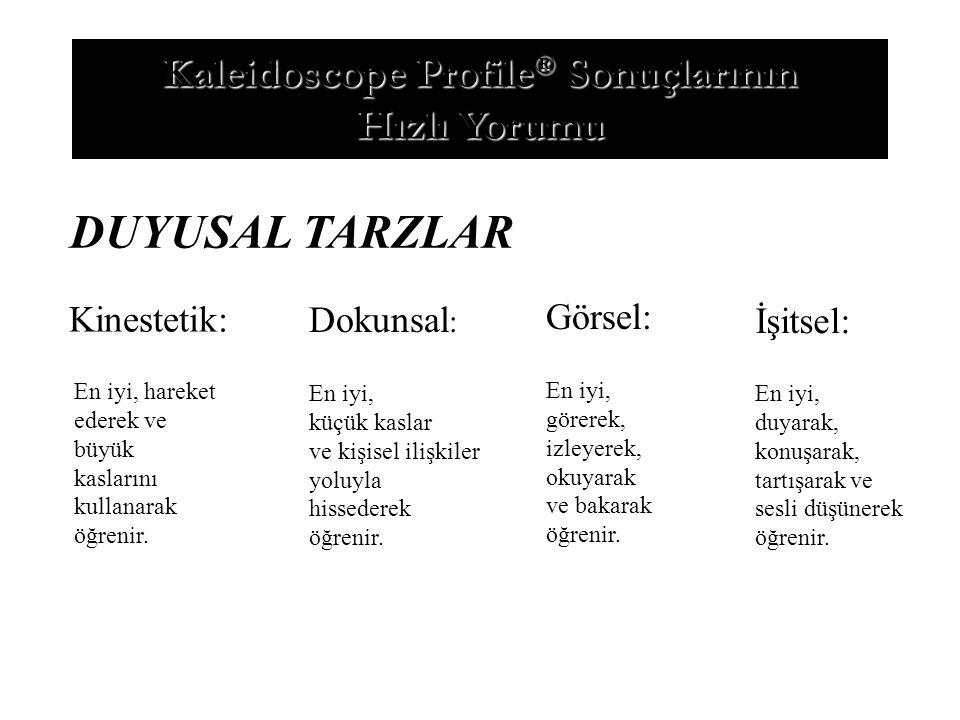 Kaleidoscope Profile® Sonuçlarının