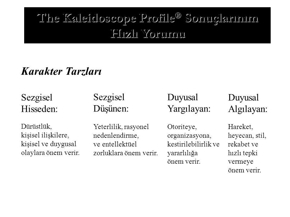 The Kaleidoscope Profile® Sonuçlarınım Hızlı Yorumu