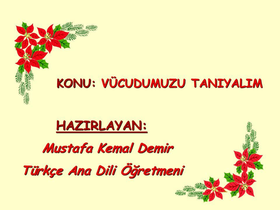Türkçe Ana Dili Öğretmeni