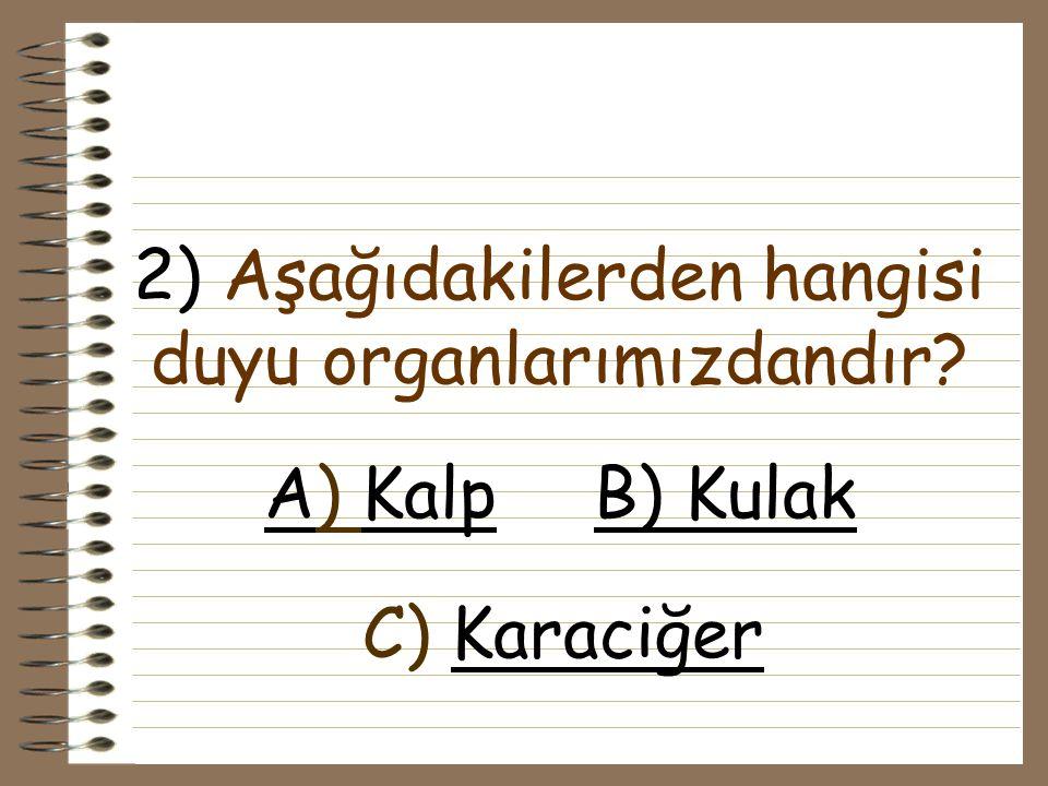2) Aşağıdakilerden hangisi duyu organlarımızdandır