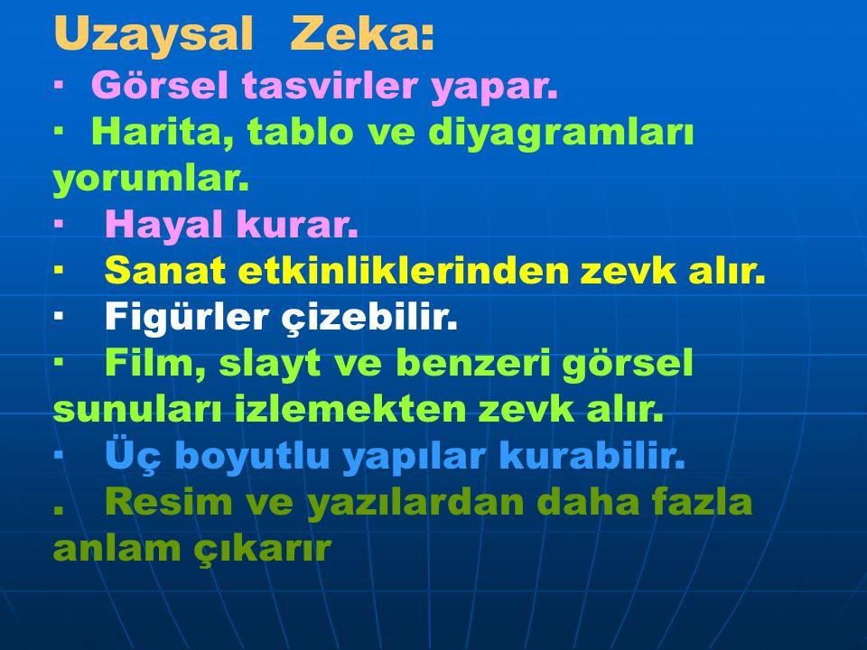 Uzaysal Zeka: · Görsel tasvirler yapar.