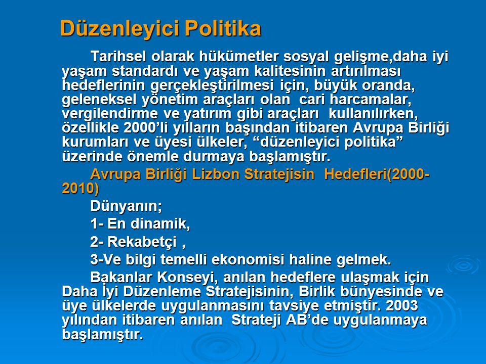 Düzenleyici Politika
