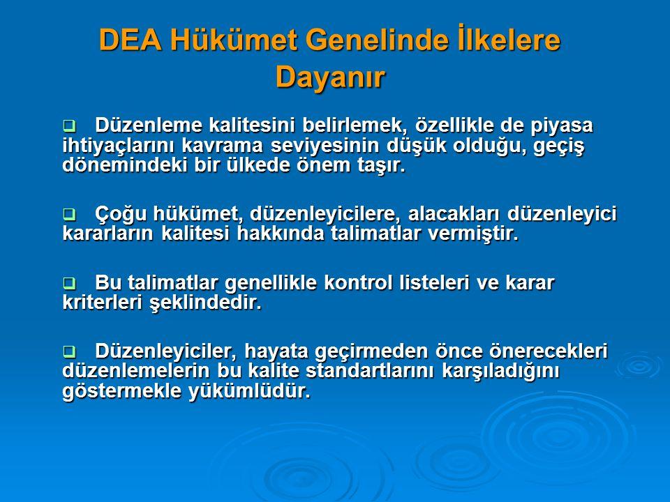 DEA Hükümet Genelinde İlkelere Dayanır