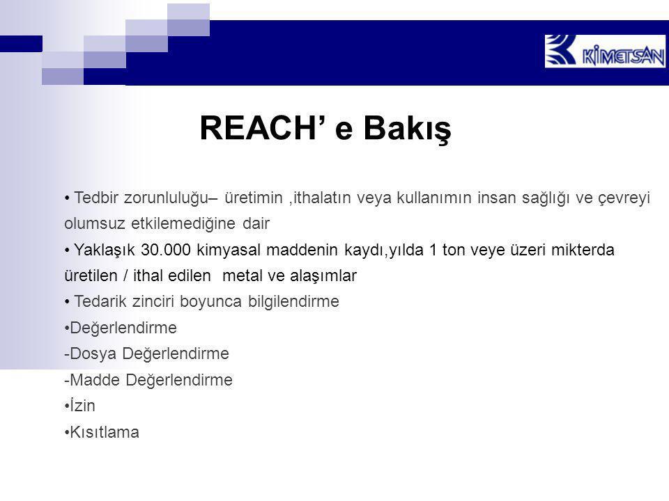 REACH' e Bakış Tedbir zorunluluğu– üretimin ,ithalatın veya kullanımın insan sağlığı ve çevreyi olumsuz etkilemediğine dair.