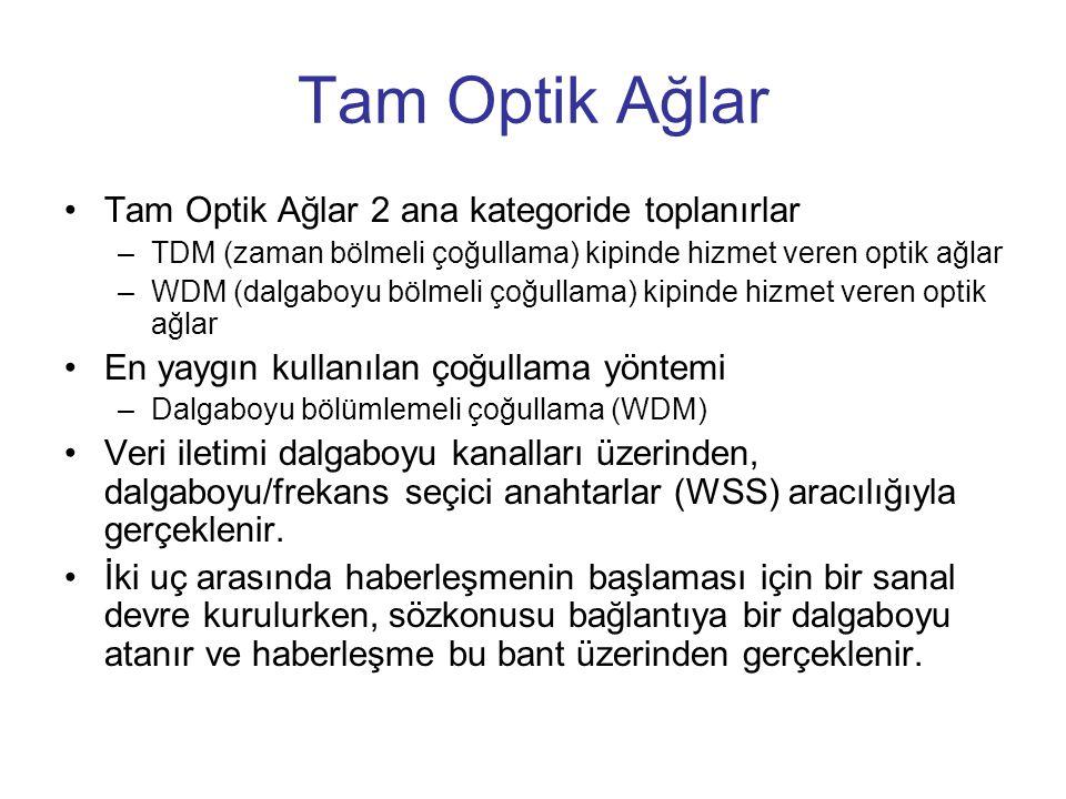 Tam Optik Ağlar Tam Optik Ağlar 2 ana kategoride toplanırlar