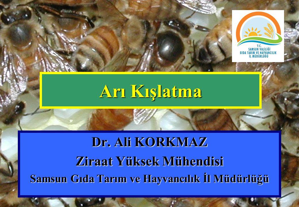 Ziraat Yüksek Mühendisi Samsun Gıda Tarım ve Hayvancılık İl Müdürlüğü