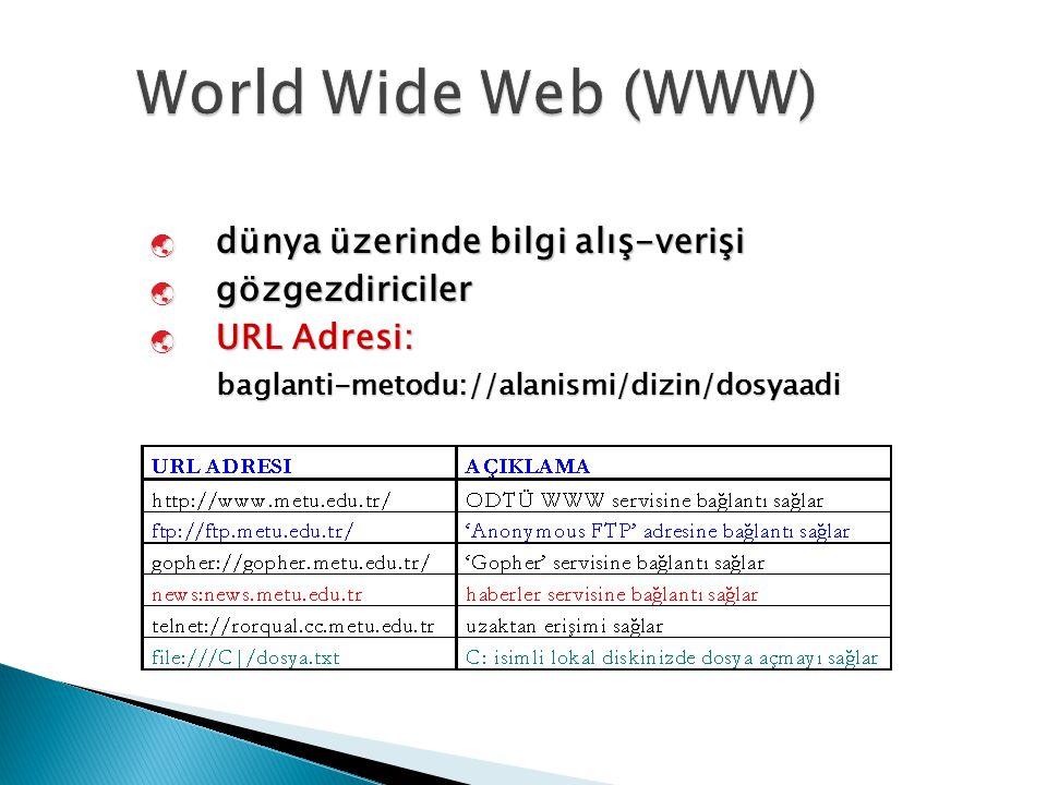 World Wide Web (WWW) dünya üzerinde bilgi alış-verişi gözgezdiriciler