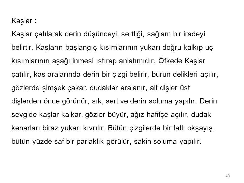 Kaşlar :
