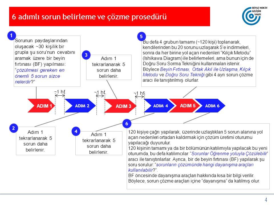 6 adımlı sorun belirleme ve çözme prosedürü
