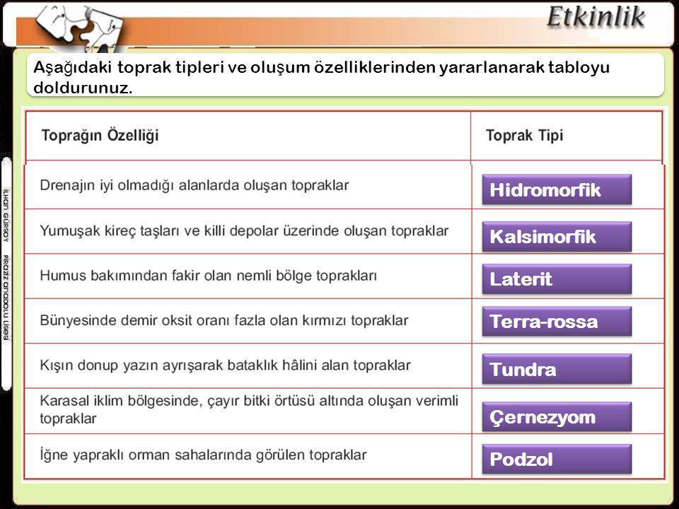 Hidromorfik Kalsimorfik Laterit Terra-rossa Tundra Çernezyom Podzol