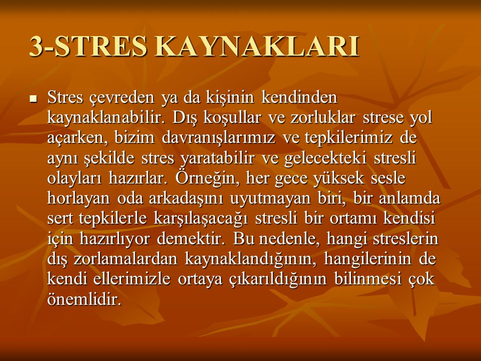 3-STRES KAYNAKLARI