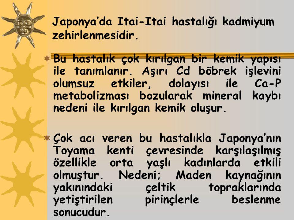 Japonya'da Itai-Itai hastalığı kadmiyum zehirlenmesidir.