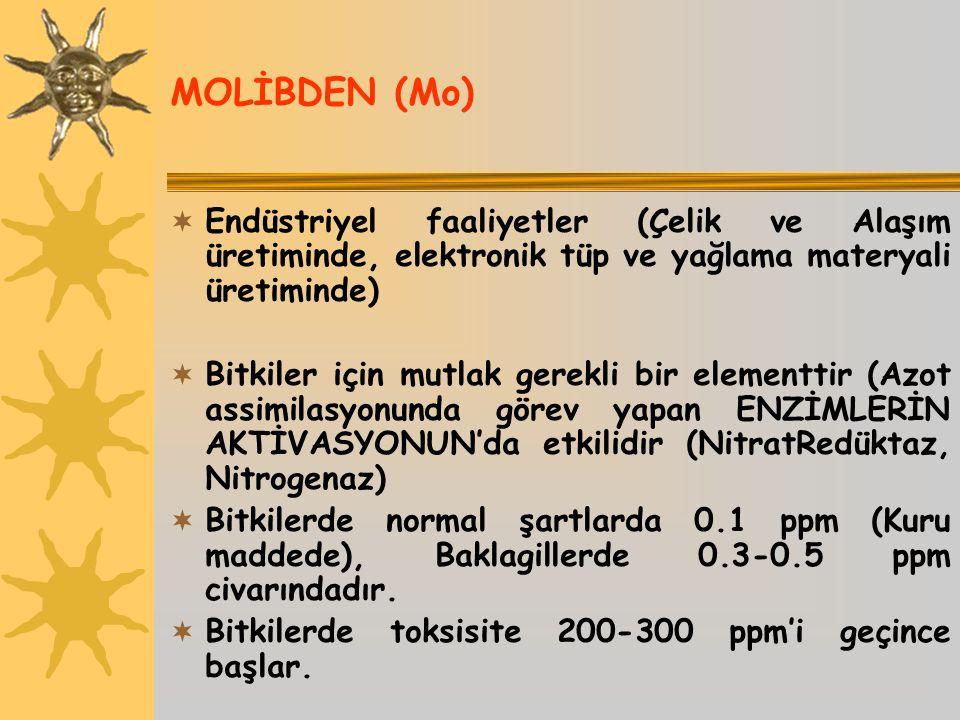 MOLİBDEN (Mo) Endüstriyel faaliyetler (Çelik ve Alaşım üretiminde, elektronik tüp ve yağlama materyali üretiminde)