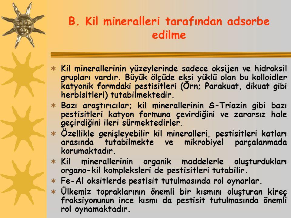 B. Kil mineralleri tarafından adsorbe edilme