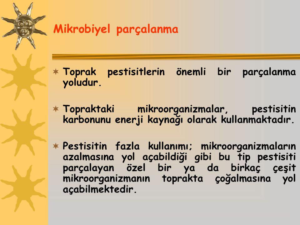 Mikrobiyel parçalanma