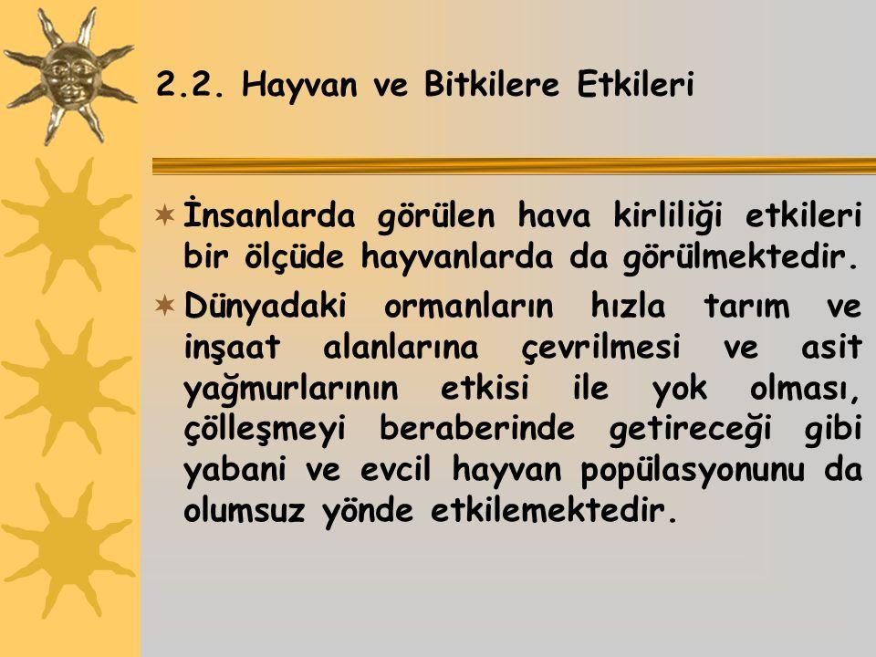 2.2. Hayvan ve Bitkilere Etkileri