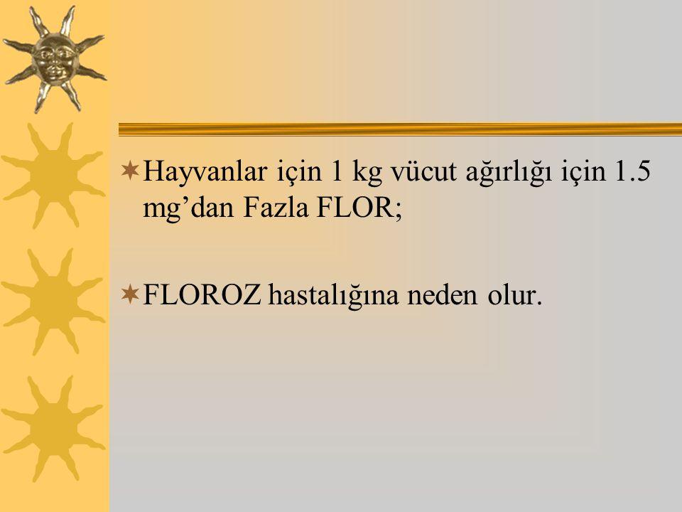 Hayvanlar için 1 kg vücut ağırlığı için 1.5 mg'dan Fazla FLOR;