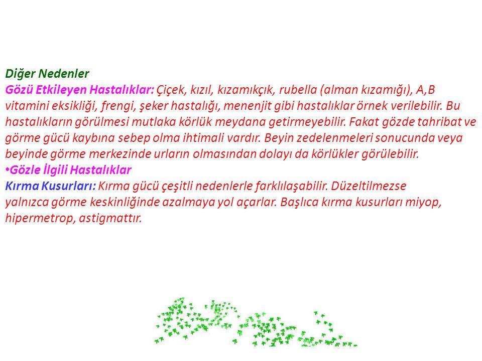 Diğer Nedenler Gözü Etkileyen Hastalıklar: Çiçek, kızıl, kızamıkçık, rubella (alman kızamığı), A,B.