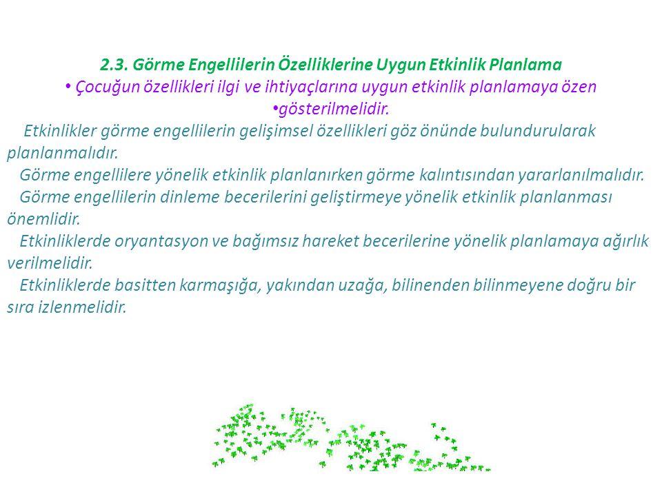 2.3. Görme Engellilerin Özelliklerine Uygun Etkinlik Planlama