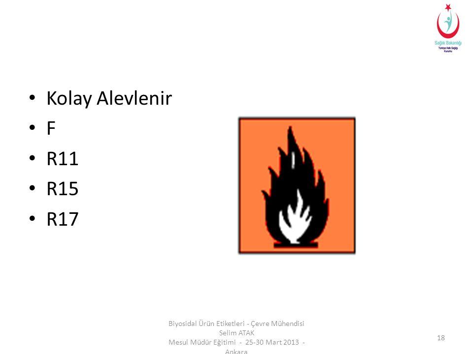 Kolay Alevlenir F. R11. R15. R17.