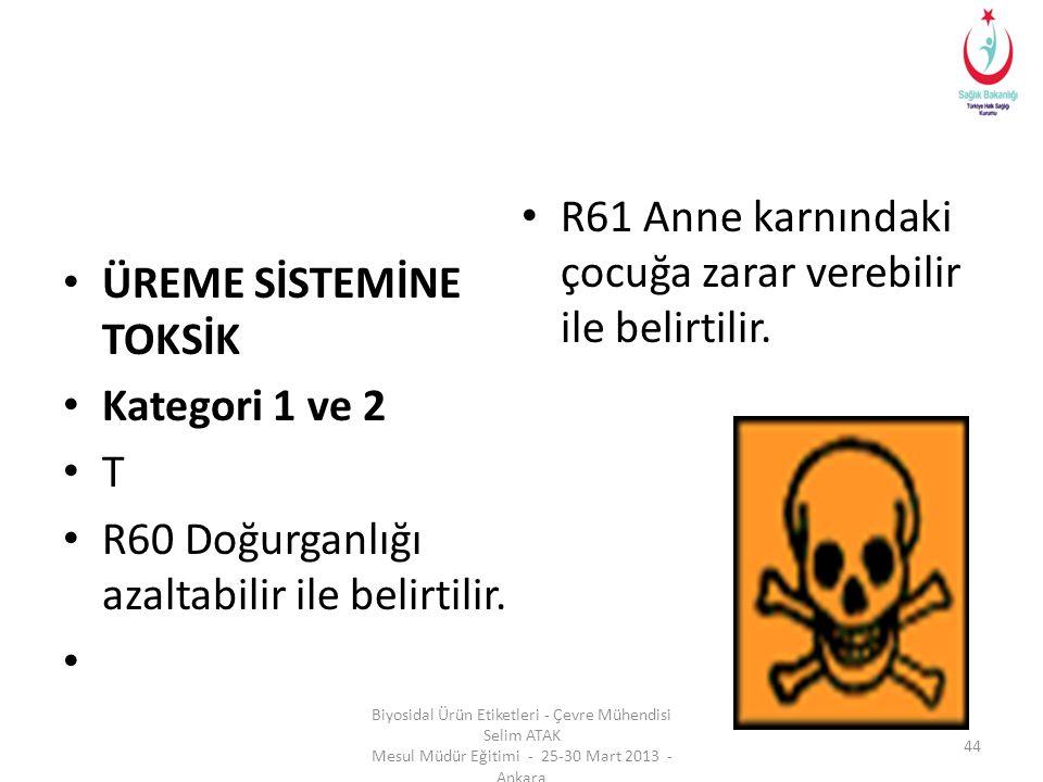 R61 Anne karnındaki çocuğa zarar verebilir ile belirtilir.