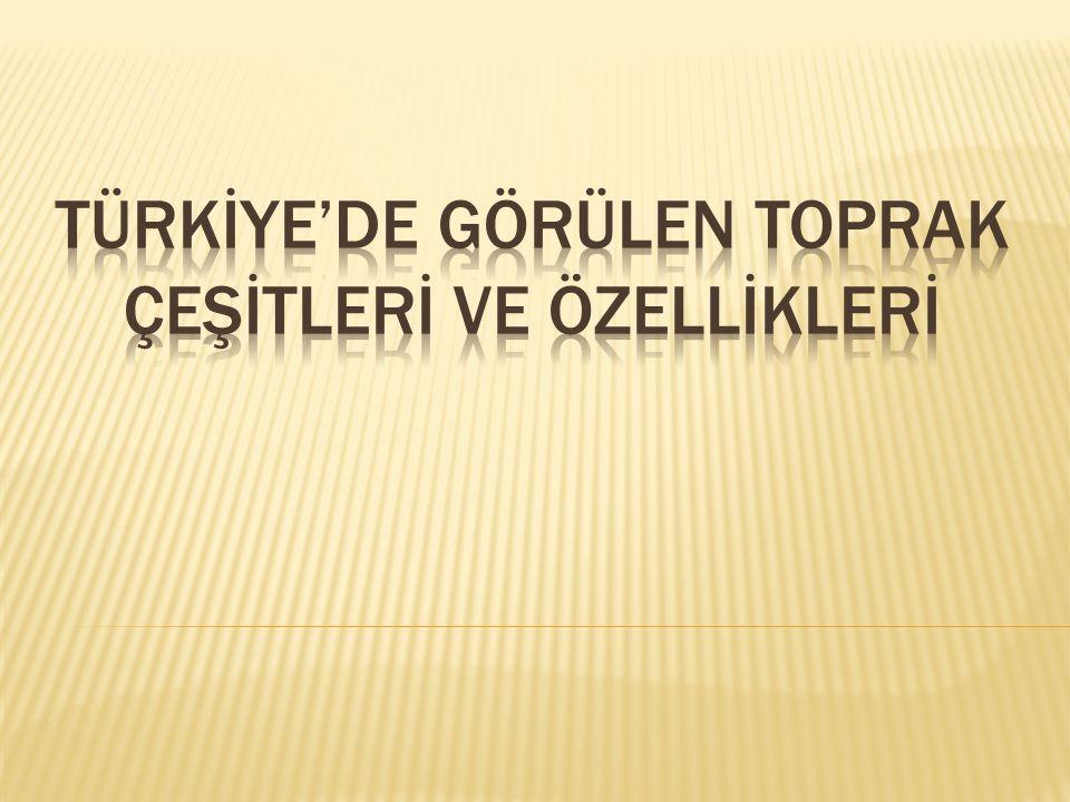 TÜRKİYE'DE GÖRÜLEN TOPRAK ÇEŞİTLERİ ve ÖZELLİKLERİ