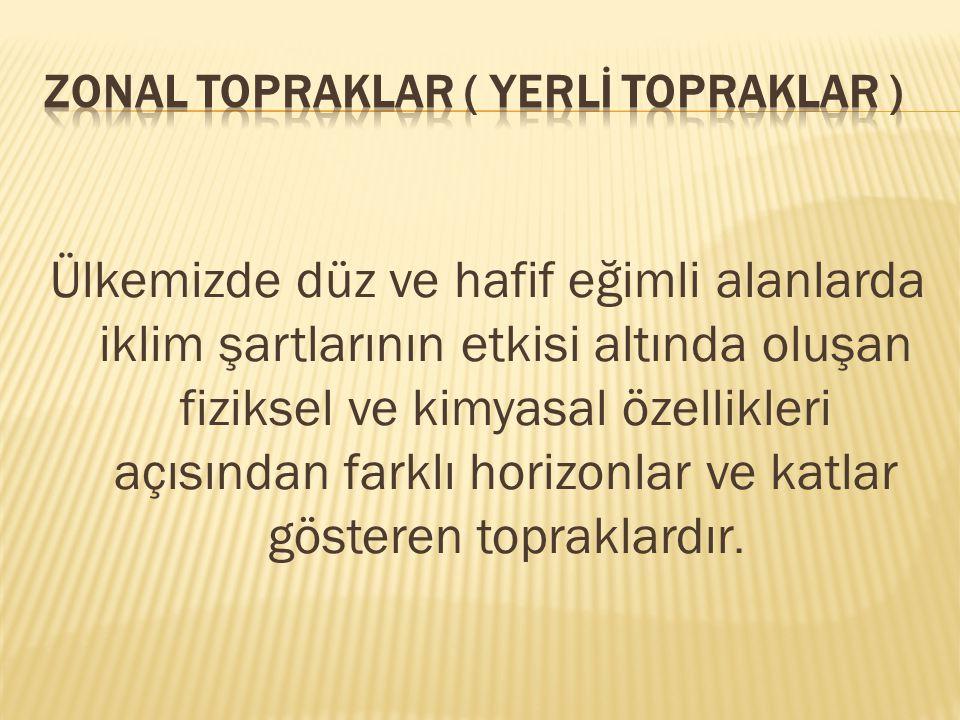 ZONAL TOPRAKLAR ( YERLİ TOPRAKLAR )