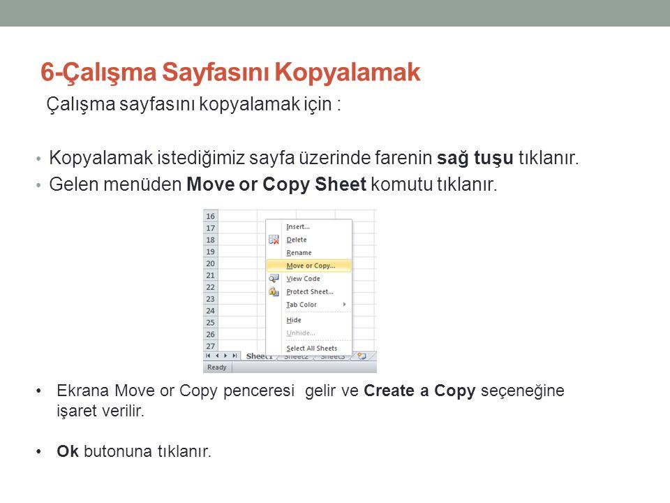 6-Çalışma Sayfasını Kopyalamak