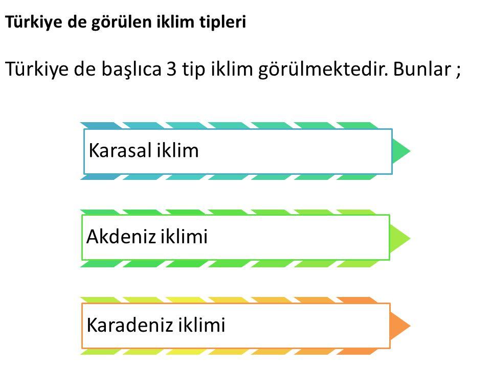 Türkiye de görülen iklim tipleri