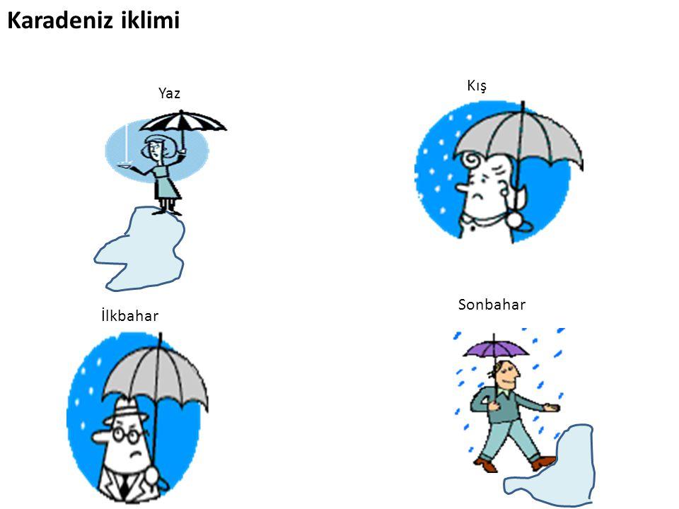 Karadeniz iklimi Kış Yaz Sonbahar İlkbahar