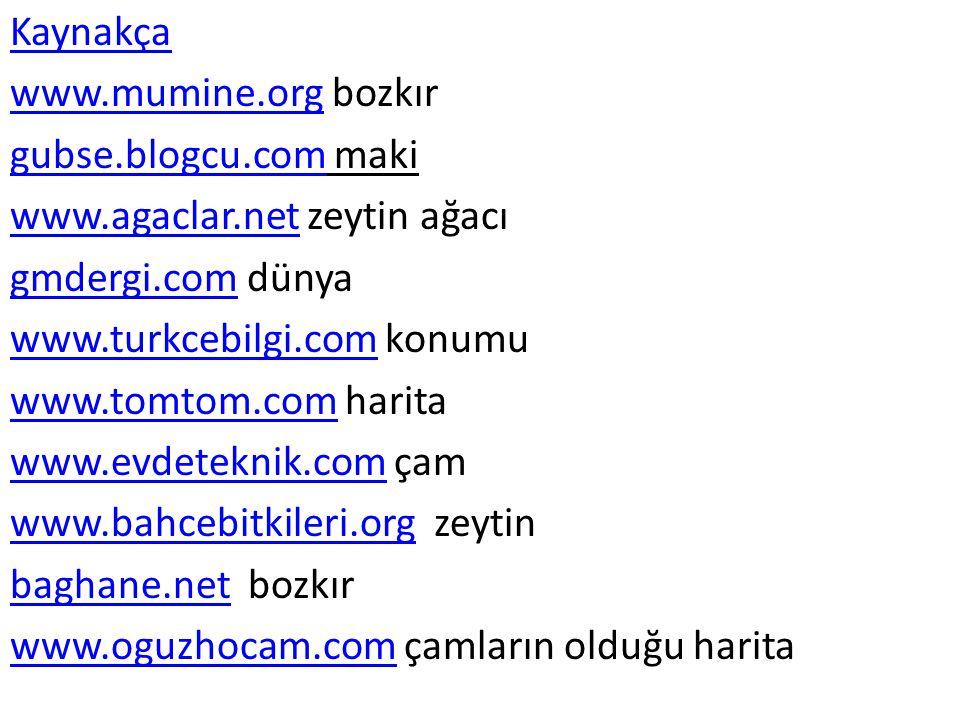 Kaynakça www.mumine.org bozkır. gubse.blogcu.com maki. www.agaclar.net zeytin ağacı. gmdergi.com dünya.