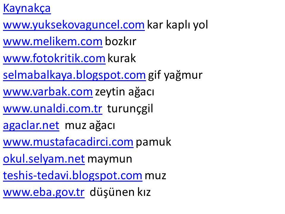 Kaynakça www.yuksekovaguncel.com kar kaplı yol. www.melikem.com bozkır. www.fotokritik.com kurak.