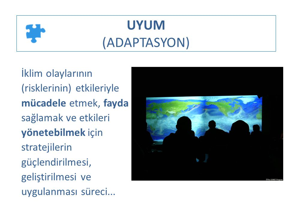 UYUM (ADAPTASYON)