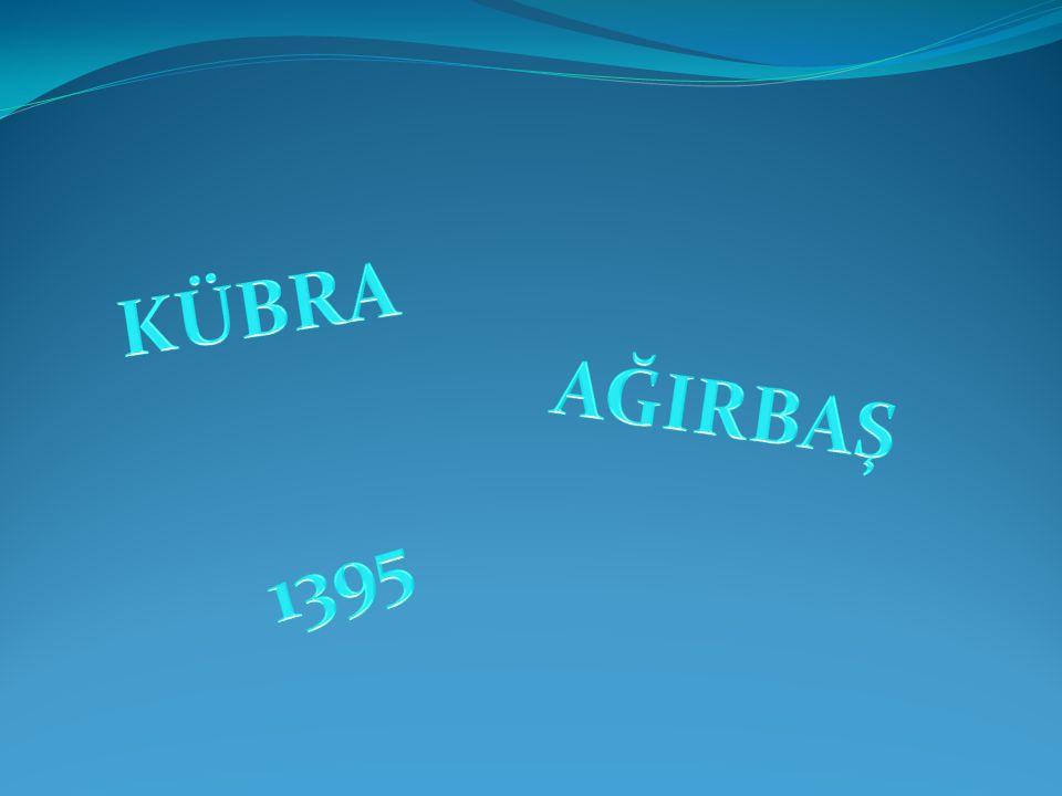 KÜBRA AĞIRBAŞ 1395