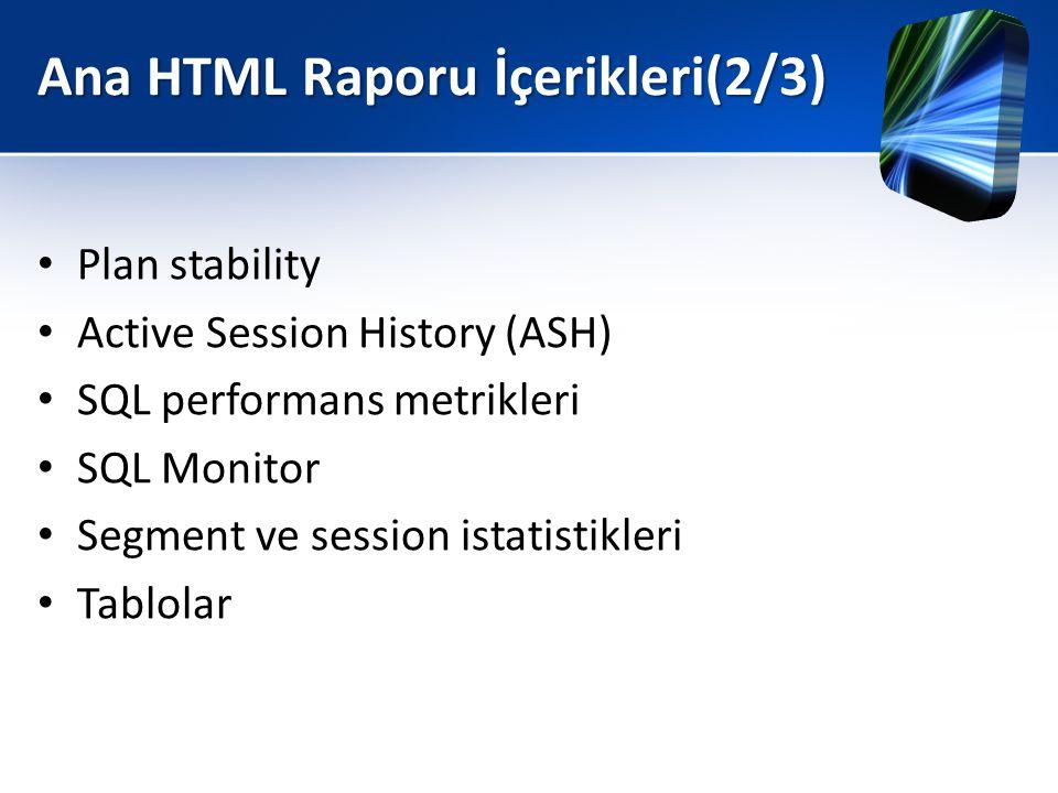 Ana HTML Raporu İçerikleri(2/3)