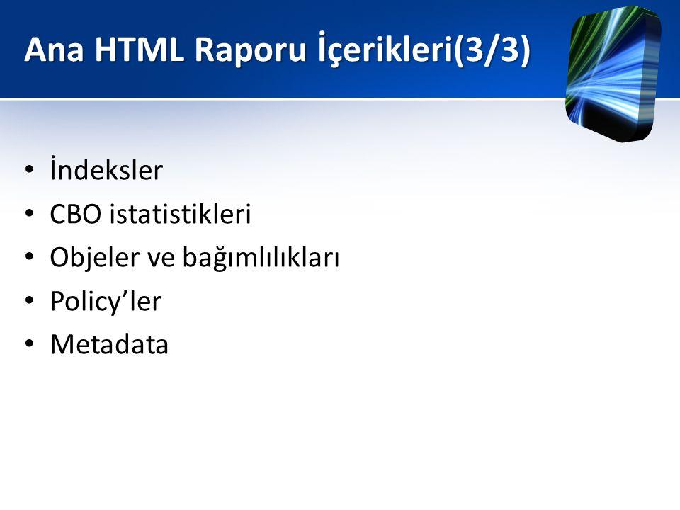 Ana HTML Raporu İçerikleri(3/3)