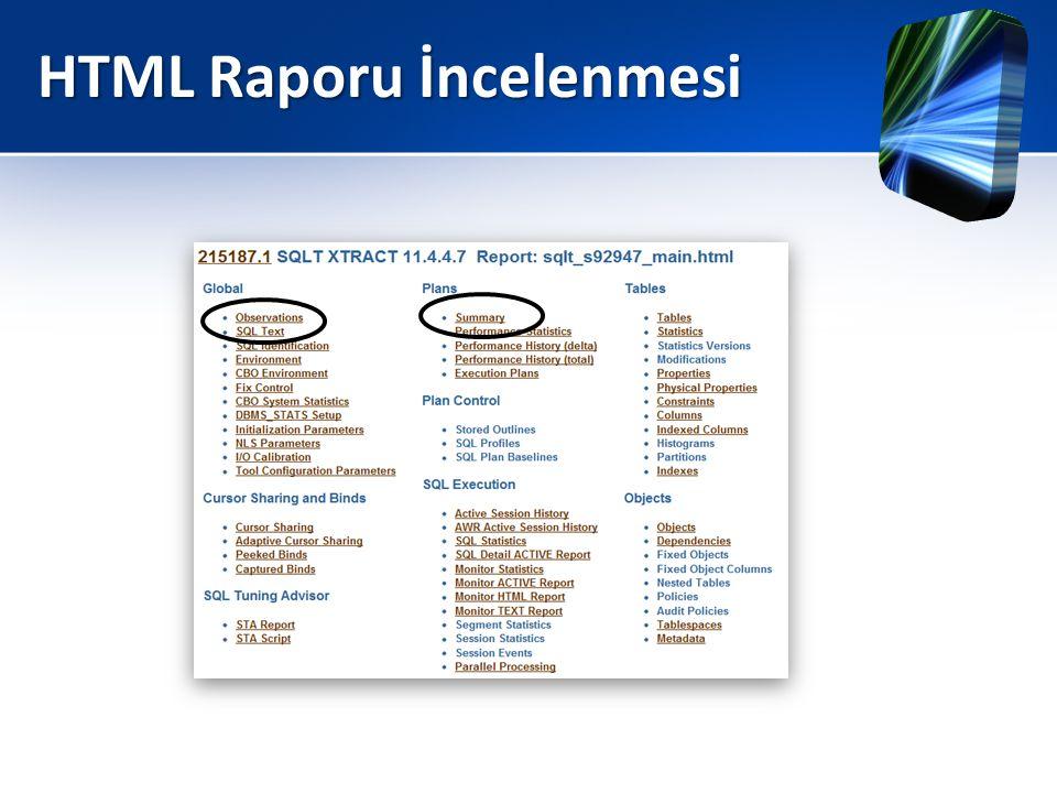 HTML Raporu İncelenmesi