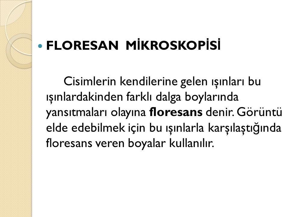 FLORESAN MİKROSKOPİSİ