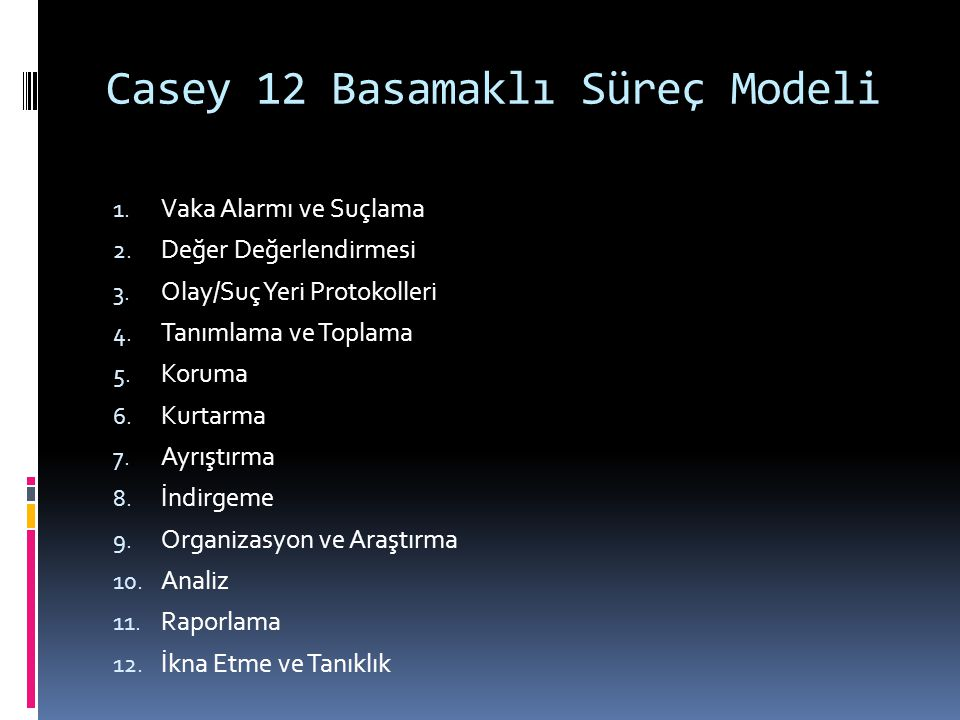 Casey 12 Basamaklı Süreç Modeli
