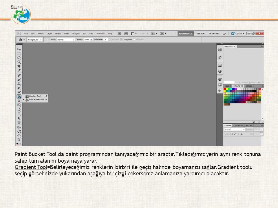 Paint Bucket Tool da paint programından tanıyacağımız bir araçtır