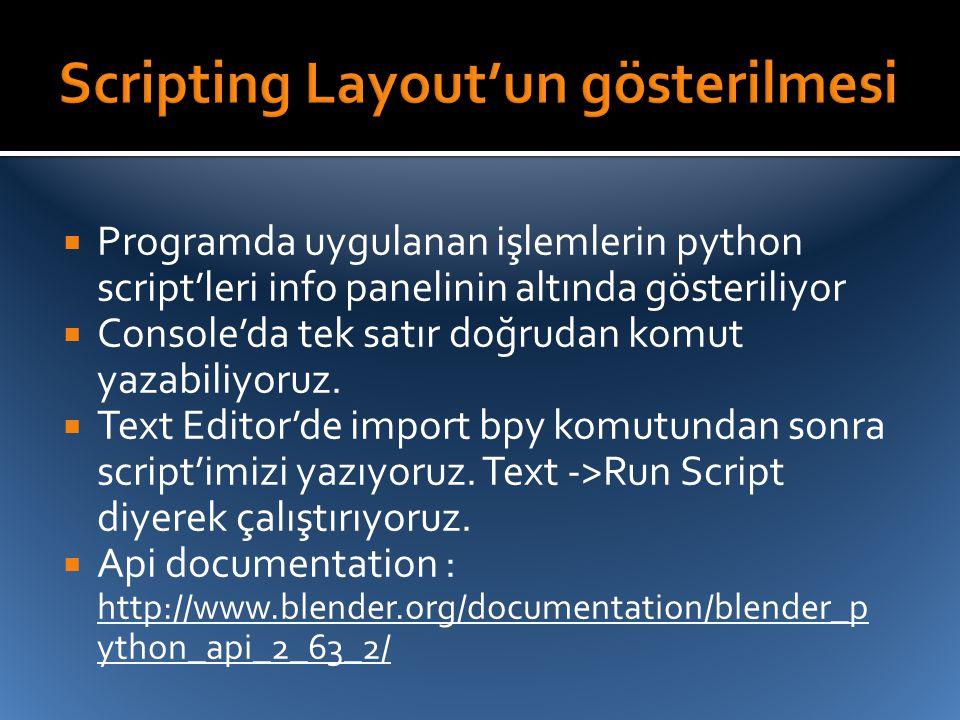 Scripting Layout'un gösterilmesi